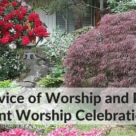 Join us this Sunday July 24th!