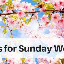 Sunday April 30
