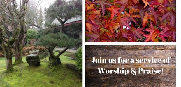 Join us for Worship on Sunday November 19th at 9:30am & 11am
